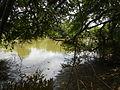 07834jfPampanga River banks Candelaria Welcome Calumpit Bulacan Roadsfvf 03.JPG