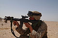 13th Marine Expeditionary Unit DVIDS10288.jpg