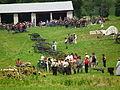 150th Gettysburg Reenactment 2013 (9178787835).jpg