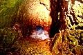 16-0579-100 חוף ראש הנקרה-דחף המים.JPG