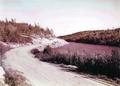 17 near Kenora, 1939.png