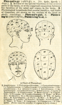 A definition of phrenology with chart from Web...