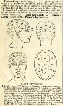 A Definition Of Phrenology With Chart From Webster S Academic Dictionary Circa 1895