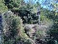 19017 Riomaggiore, Province of La Spezia, Italy - panoramio (13).jpg