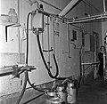 1960 Manège de traite à Brouessy-9-cliche Jean Joseph Weber.jpg