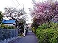 1 Chome Shibasaki, Chōfu-shi, Tōkyō-to 182-0014, Japan - panoramio.jpg
