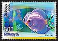 2006. Stamp of Belarus 0669.jpg
