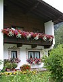 2006 windowboxes Austria 233106098.jpg