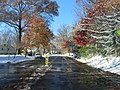 2007 12 06 - Greenbelt - Ridge Rd approaching Lastner La.JPG