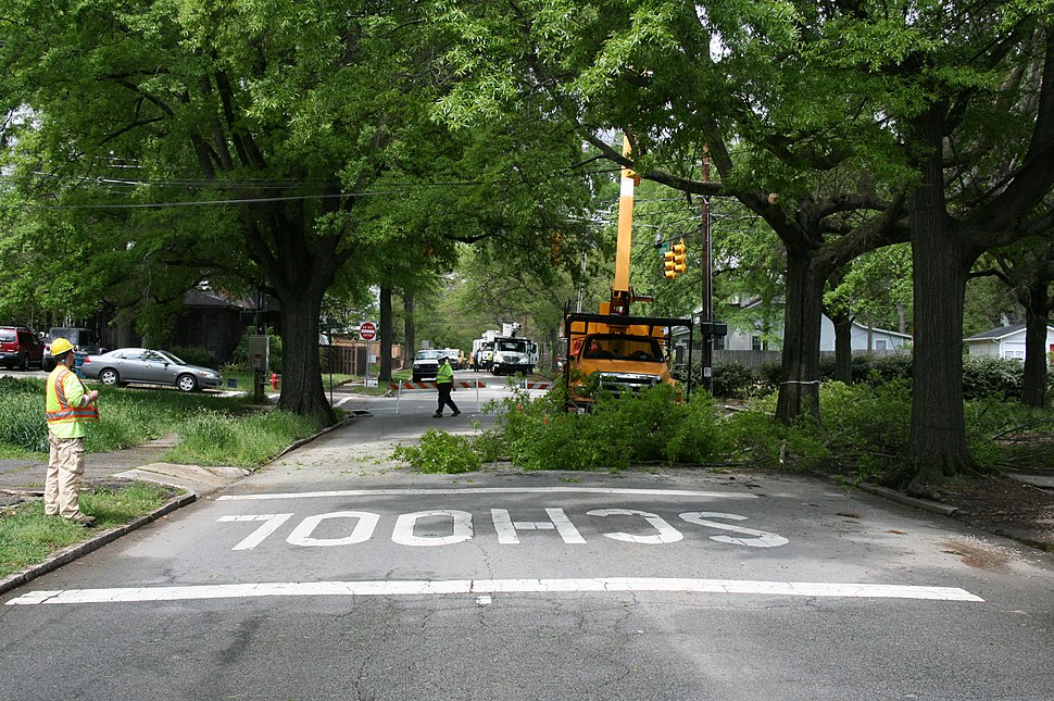 2008-04-21 Tree trimming on Gregson St 1