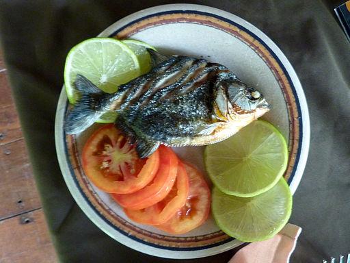 piraña plato tipico