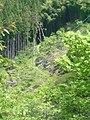 2010-5-6 吉野山(yoshinoyama) - panoramio (2).jpg