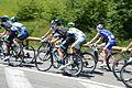 2014-07-16 Etape 11 du Tour de France. Peloton 7. Free image Spielvogel. No copyright.jpg