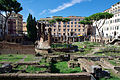 20140806 Largo di Torre Argentina Rome 1602.jpg
