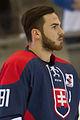 20150207 1756 Ice Hockey AUT SVK 9482.jpg