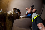 34-year-old Paratrooper, New U.S. Citizen, to Reprise Role As Boxing Champ DVIDS229634.jpg