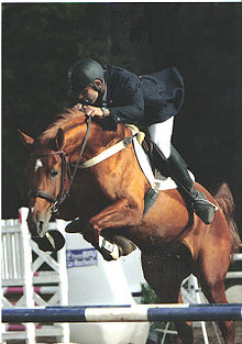 A brown horse in mid-air over a blue and white striped fence. The horse is ridden by a man in a black helmet, coat and boots and white pants. In the background, other fences are partially visible.