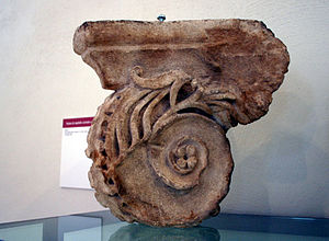 Volute - Volute of a Roman capital.