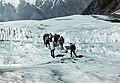 82 expedition to TÜ 350 (23).jpg