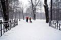8766vik Park w Pszczynie . Foto Barbara Maliszewska.jpg