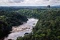 AERIAL RIVER RAINFOREST SIPALIWINI SURINAM AMAZONE SOUTH-AMERICA (33018122995).jpg