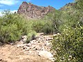 A View of the West Side of the Superstition Mountains - panoramio.jpg