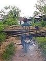 A bambo farmer.jpg