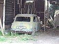 Abandoned mini at Hickmans Green, Boughton Street, Kent.jpg