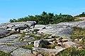 Acadia 2012 08 22 0325 (7958481956).jpg