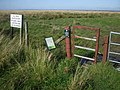 Access to Solway salt marshes at Border - geograph.org.uk - 1500306.jpg