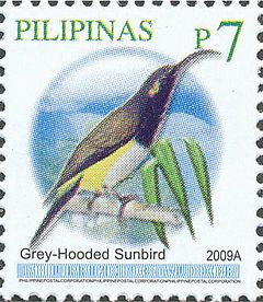 Aethopyga primigenia 2009 stamp of the Philippines.jpg
