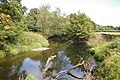 Afon Tanat - geograph.org.uk - 552175.jpg
