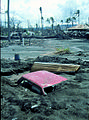 Aftermath of volcano eruption, Rabaul, PNG, 1994 (10665662006).jpg
