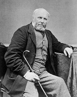 Alfred Domett - Image: Alfred Domett c 1870 1887