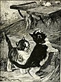 All about animals. Facts, stories and anecdotes (1900) (14774710411).jpg