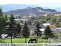 Along Rittich Road - Ellison District - Kelowna - BC - Canada - 02 (37370394436) (2).jpg