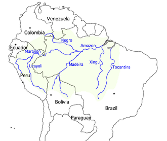 Water resources management in Brazil - Amazon River basin