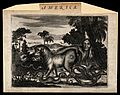 America; grotesque animals with human heads and serpents. Et Wellcome V0022892.jpg