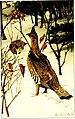 American game-bird shooting (1910) (14752179831).jpg