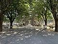 Ancien cimetière de Villeurbanne, allée principale issue de l'entrée au 1 rue du cimetière (mai 2020).jpg