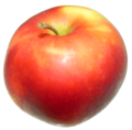 Apple red 1.png