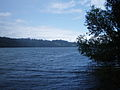 Ardingly Reservoir Sussex.jpg