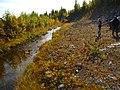 Arjeplog V, Sweden - panoramio (8).jpg