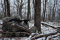 Army Mountain Warfare School winter exercises 160324-Z-QK503-951.jpg
