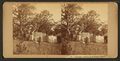 Ashland - cottage and pigeon house, from Robert N. Dennis collection of stereoscopic views.png