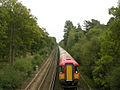 Ashurst-Brockenhurst railway line, north of Ashurst Lodge, New Forest - geograph.org.uk - 24711.jpg