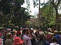 Association of lovers of trees walk at Al Maadi , photo by Hatem Moushir 8.jpg