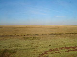 Vast region of open grassland in northern Kazakhstan and adjacent portions of Russia