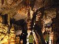 Avshalom Cave (Sorek Cave) - Stalactite Cave Nature Reserve P1120721 (7139532875).jpg
