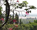 Balcon al rio - panoramio (1).jpg